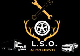 Lso.sk - nová web stránka